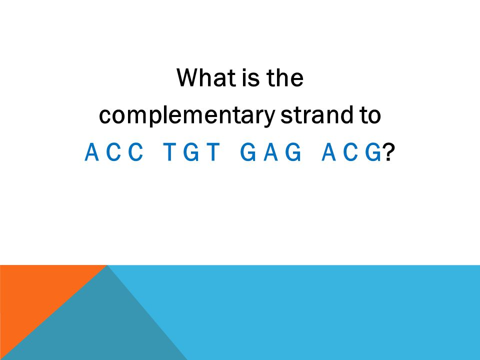 What is the complementary strand to A C C T G T G A G A C G