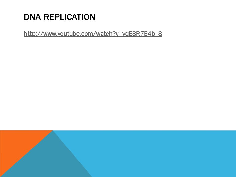 DNA REPLICATION http://www.youtube.com/watch v=yqESR7E4b_8