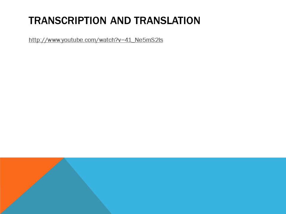 TRANSCRIPTION AND TRANSLATION http://www.youtube.com/watch v=41_Ne5mS2ls