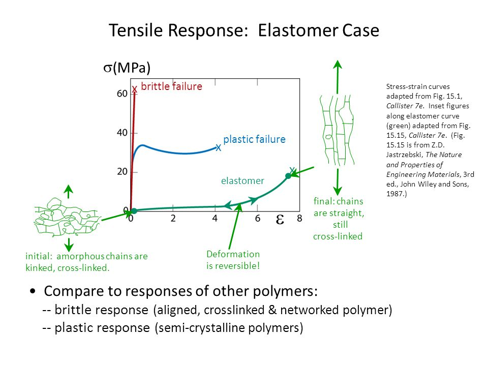 Compare to responses of other polymers: -- brittle response (aligned, crosslinked & networked polymer) -- plastic response (semi-crystalline polymers) Stress-strain curves adapted from Fig.