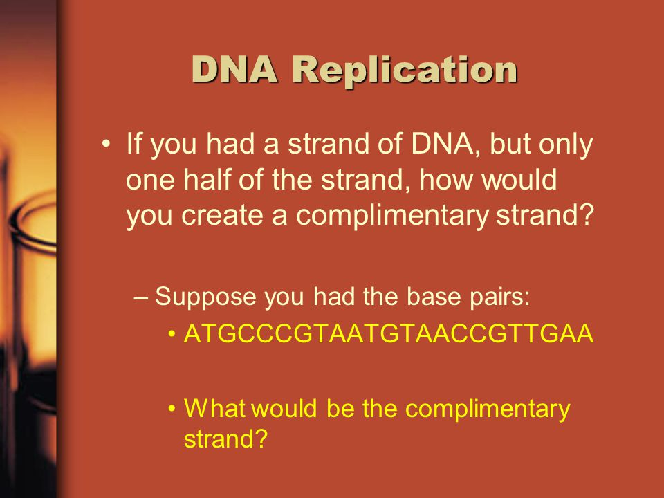 DNA Replication The way that DNA is constructed allows for exact duplication When DNA is separated one side can be copied because of base pairing