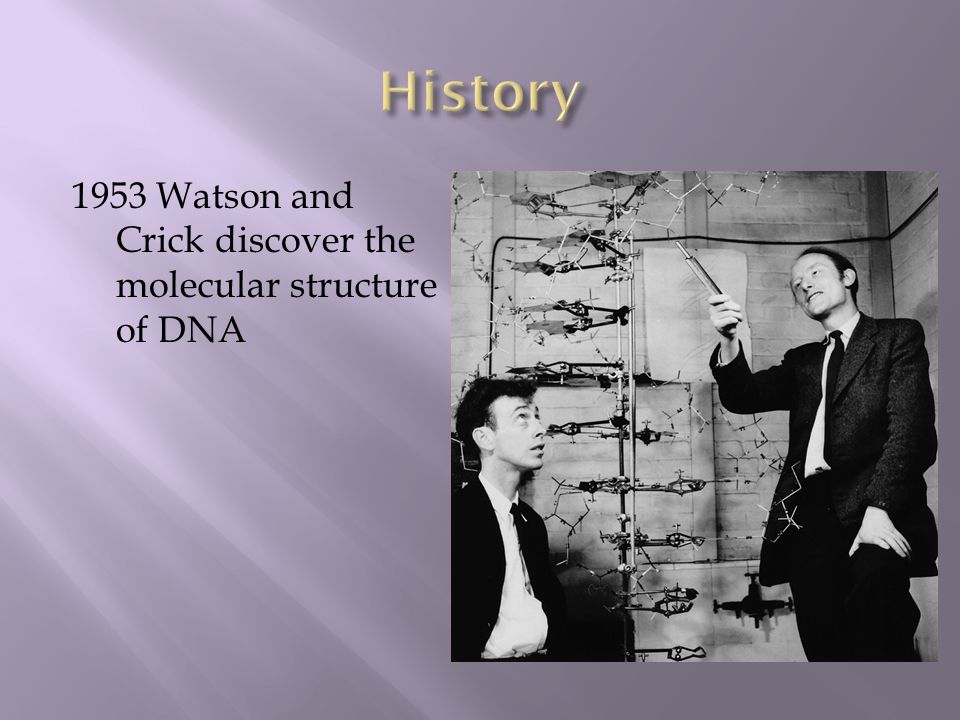 1953 Watson and Crick discover the molecular structure of DNA