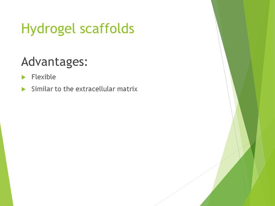 Hydrogel scaffolds Advantages:  Flexible  Similar to the extracellular matrix