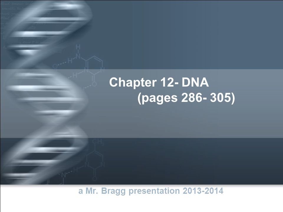 Chapter 12- DNA (pages 286- 305) a Mr. Bragg presentation 2013-2014