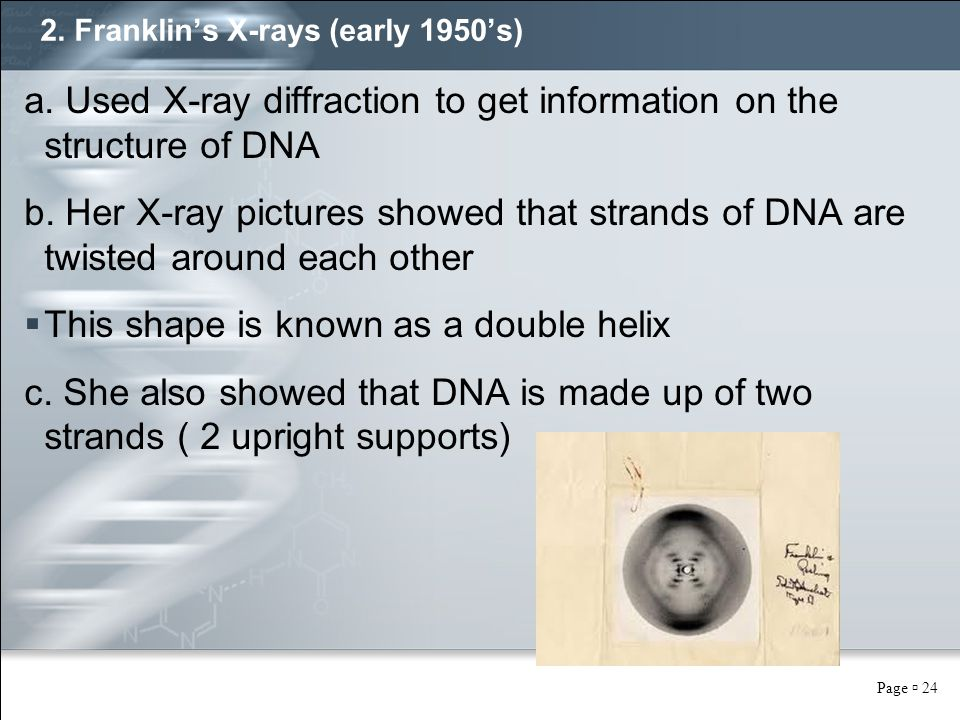 Page  24 2. Franklin's X-rays (early 1950's) a. Used X-ray diffraction to get information on the structure of DNA b. Her X-ray pictures showed that s