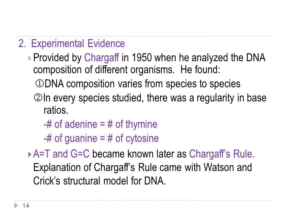 14 2. Experimental Evidence  Provided by Chargaff in 1950 when he analyzed the DNA composition of different organisms. He found:  DNA composition va