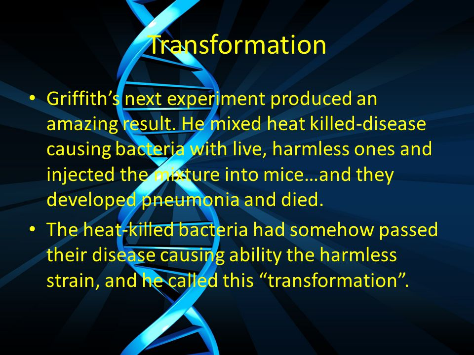 Transformation Griffith's next experiment produced an amazing result.