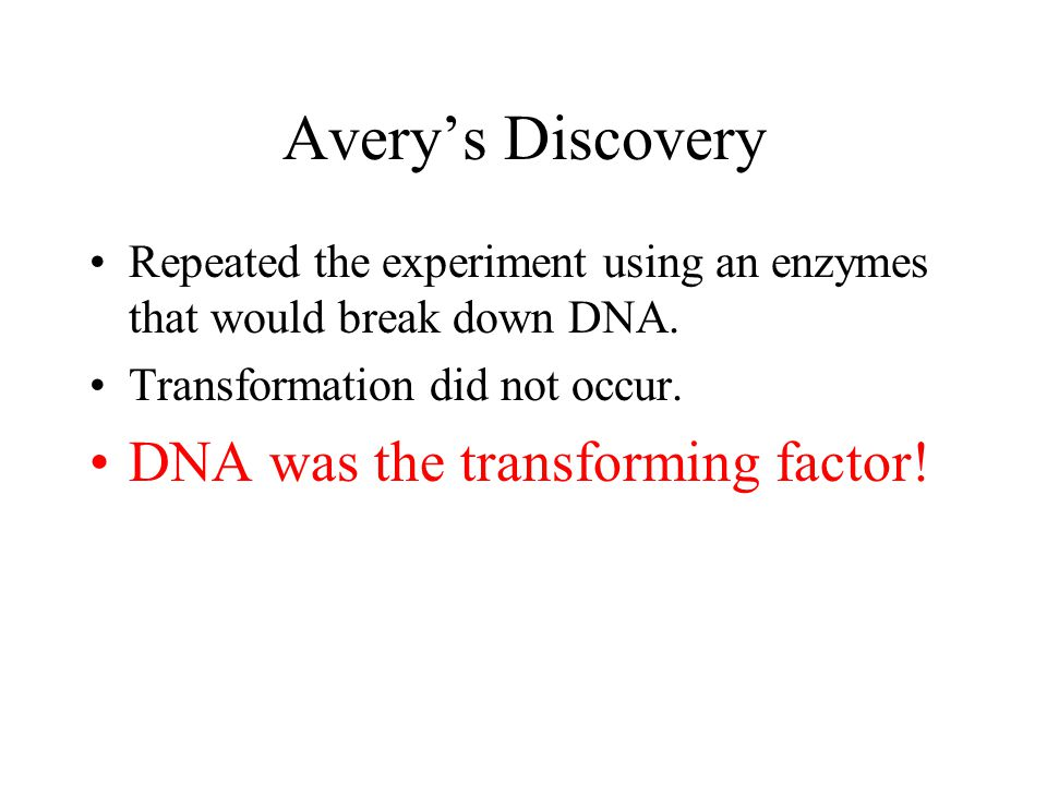 Avery's Discovery Repeated the experiment using an enzymes that would break down DNA. Transformation did not occur. DNA was the transforming factor!