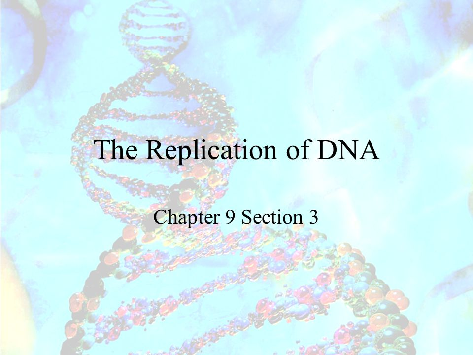 The Replication of DNA Chapter 9 Section 3