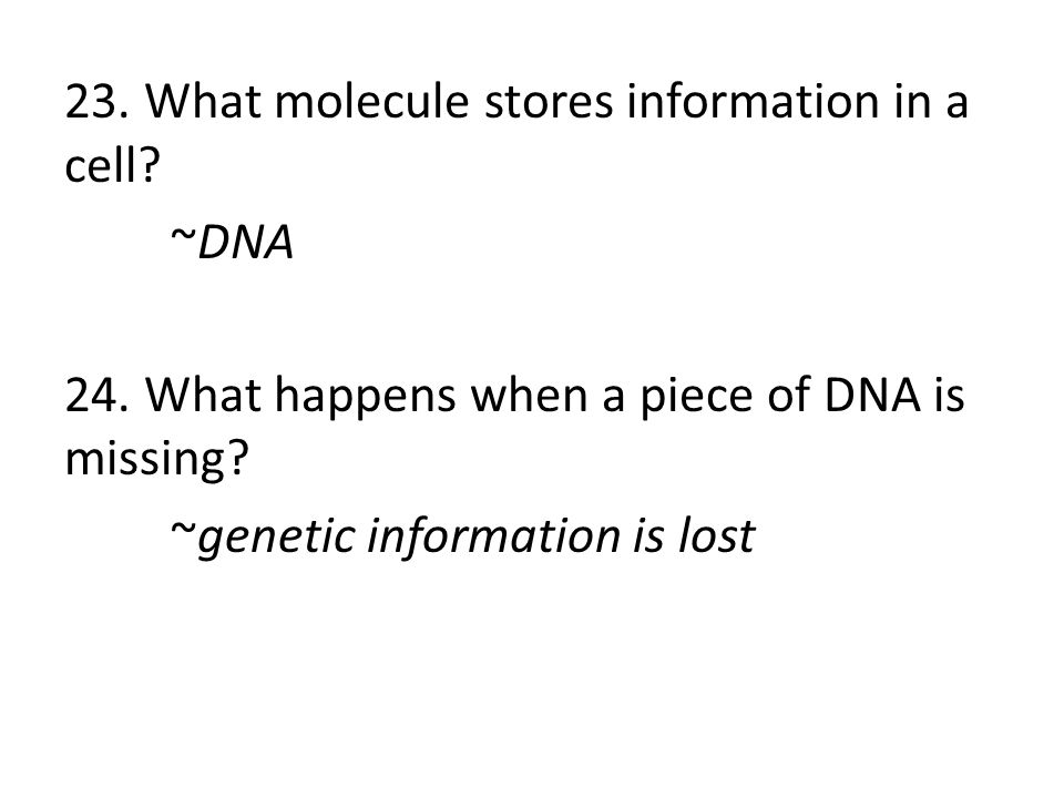 23. What molecule stores information in a cell? ~DNA 24. What happens when a piece of DNA is missing? ~genetic information is lost