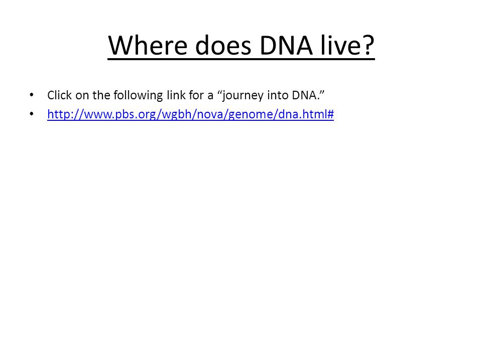 "Where does DNA live? Click on the following link for a ""journey into DNA."" http://www.pbs.org/wgbh/nova/genome/dna.html#"