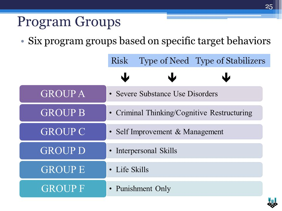 Program Groups Six program groups based on specific target behaviors 25  RiskType of NeedType of Stabilizers 