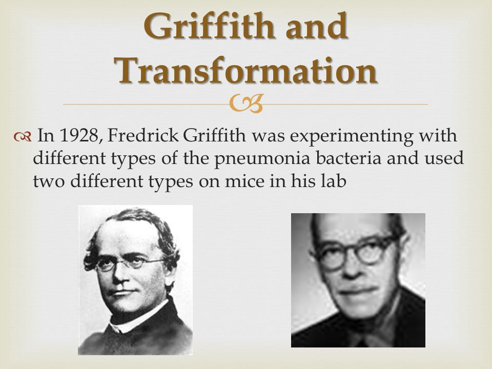  1.Injected mice with Disease bacteria 2.Injected mice with harmless bacteria 3.Heated the disease bacteria and then injected the heat-killed bacteria Griffith's Experiments