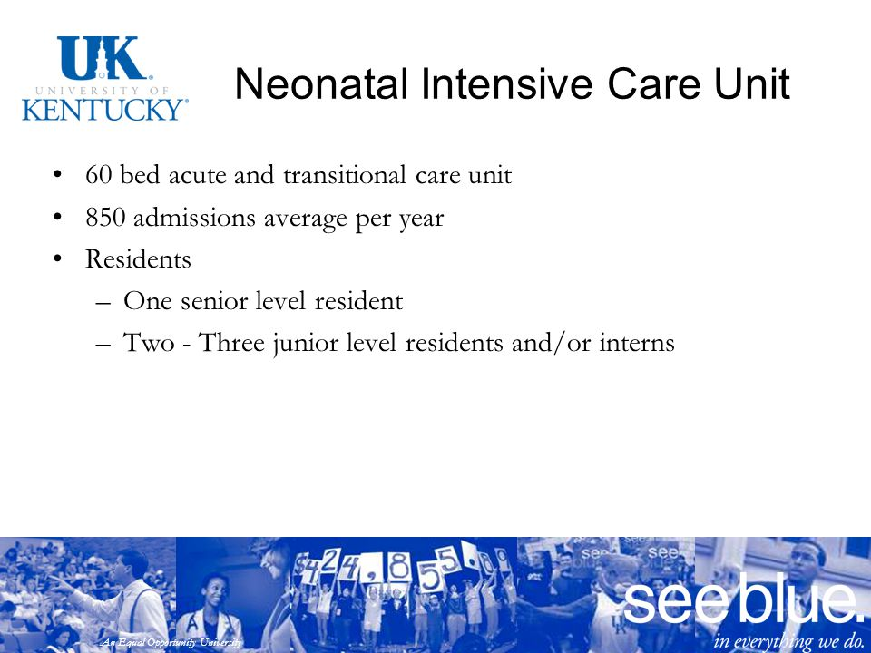 An Equal Opportunity University Neonatal Intensive Care Unit 60 bed acute and transitional care unit 850 admissions average per year Residents –One se