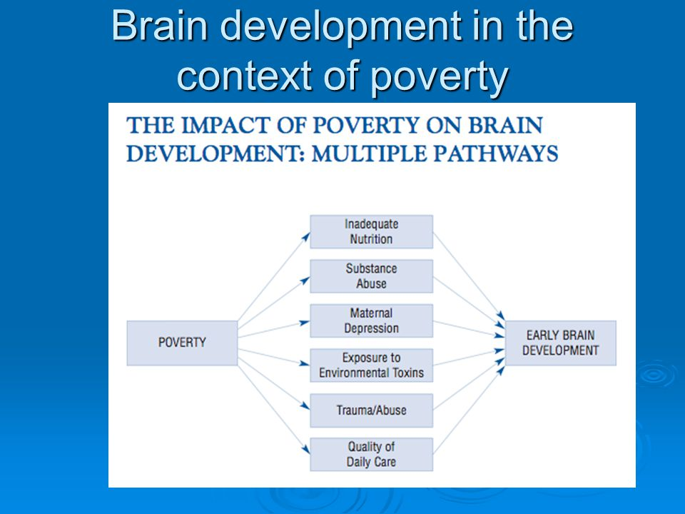 Brain development in the context of poverty