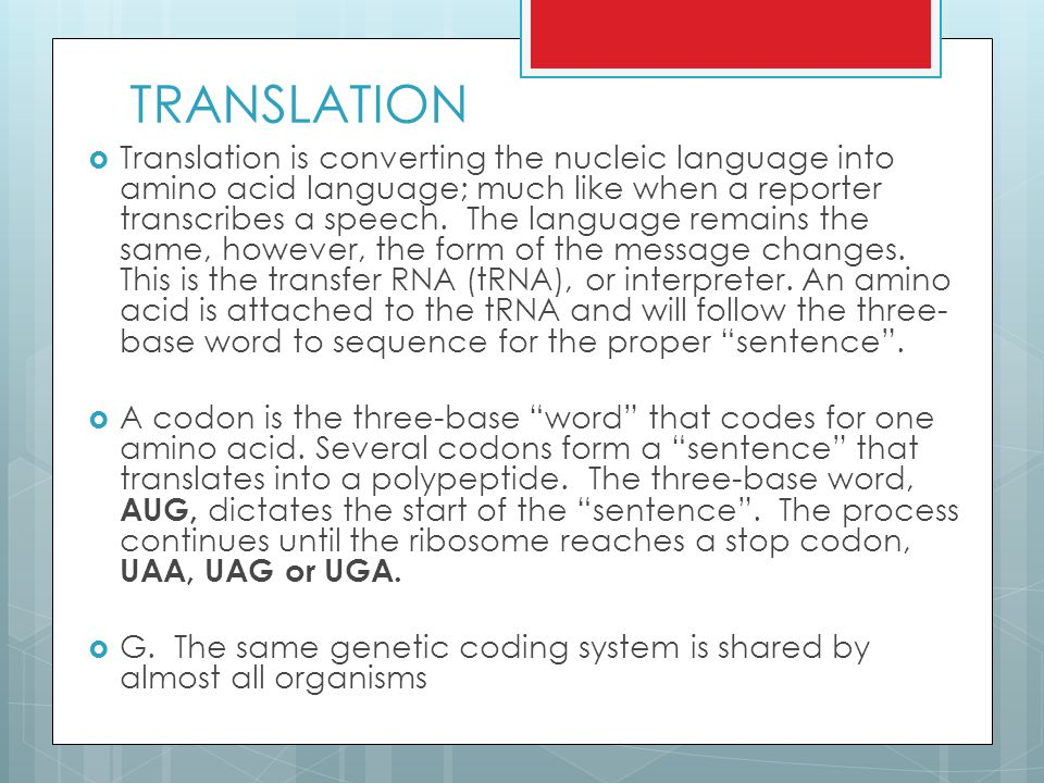 TRANSLATION  Translation is converting the nucleic language into amino acid language; much like when a reporter transcribes a speech.