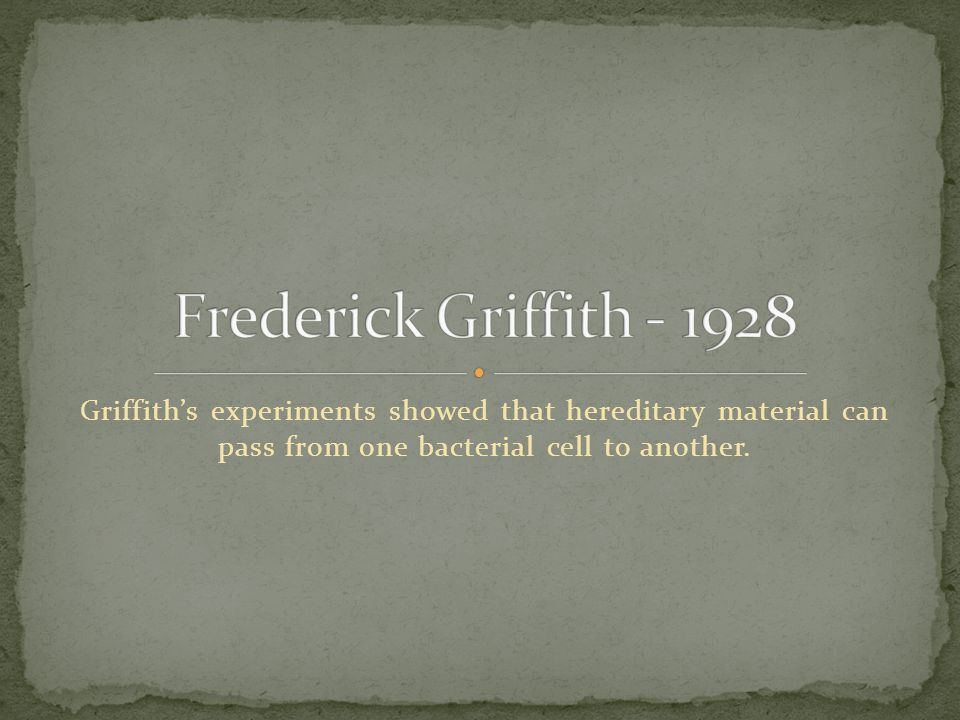 Griffith's experiments showed that hereditary material can pass from one bacterial cell to another.