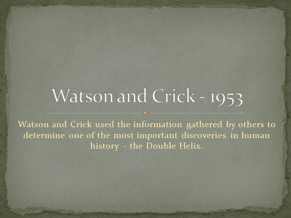 Watson and Crick used the information gathered by others to determine one of the most important discoveries in human history – the Double Helix.