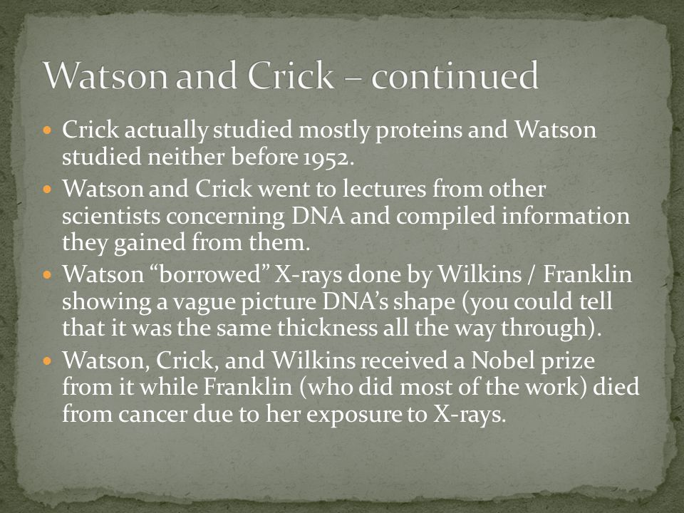 Crick actually studied mostly proteins and Watson studied neither before 1952.