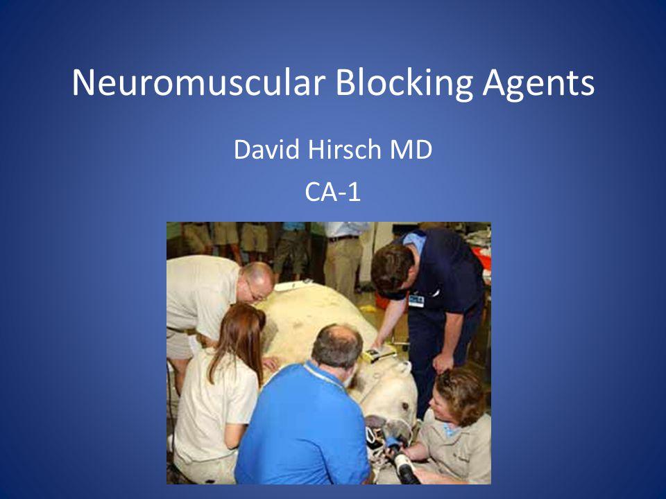 Neuromuscular Blocking Agents David Hirsch MD CA-1