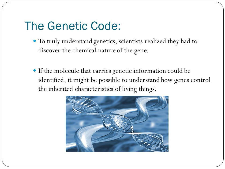 The Genetic Code: To truly understand genetics, scientists realized they had to discover the chemical nature of the gene.
