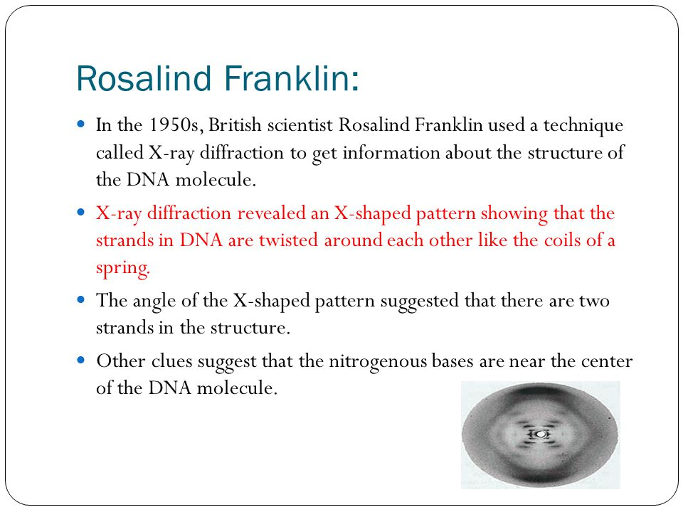 Rosalind Franklin: In the 1950s, British scientist Rosalind Franklin used a technique called X-ray diffraction to get information about the structure of the DNA molecule.