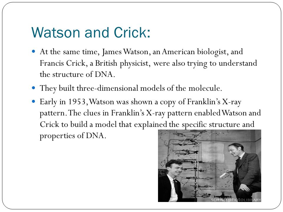Watson and Crick: At the same time, James Watson, an American biologist, and Francis Crick, a British physicist, were also trying to understand the structure of DNA.