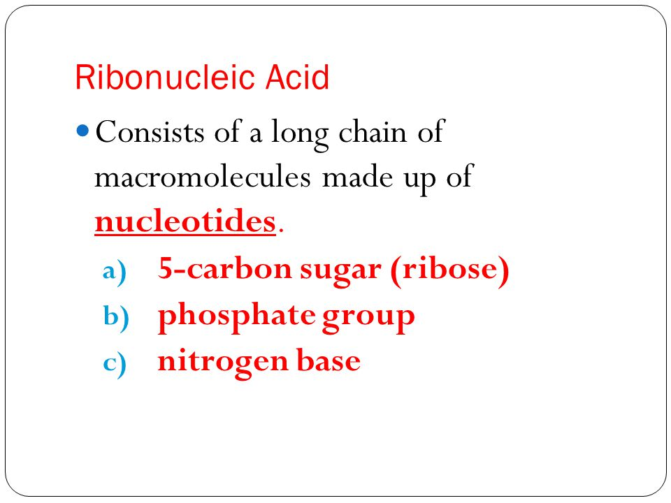 Ribonucleic Acid Consists of a long chain of macromolecules made up of nucleotides.