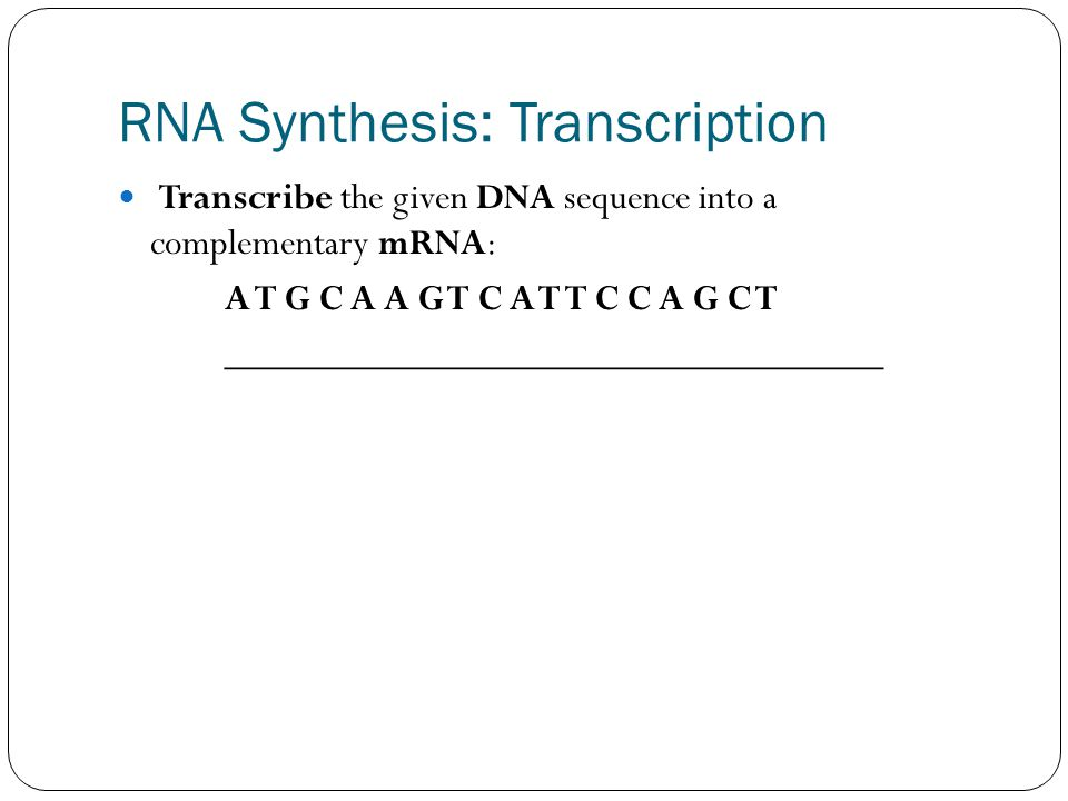 RNA Synthesis: Transcription Transcribe the given DNA sequence into a complementary mRNA: A T G C A A G T C A T T C C A G C T __________________________________