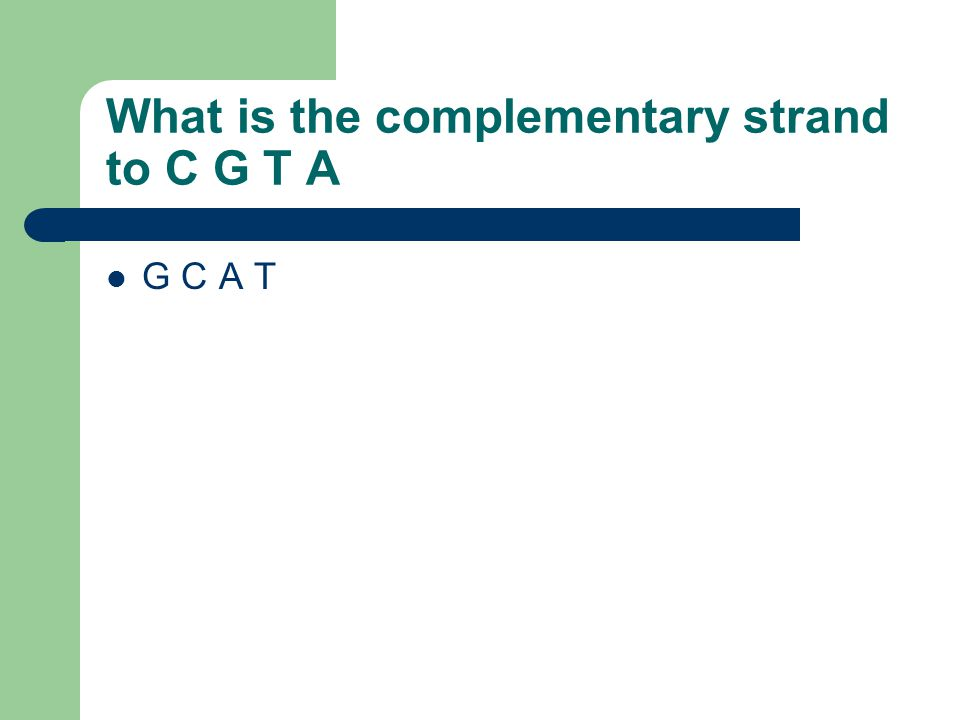 What is the complementary strand to C G T A G C A T