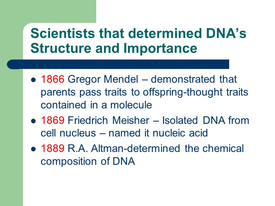 Scientists that determined DNA's Structure and Importance 1866 Gregor Mendel – demonstrated that parents pass traits to offspring-thought traits contained in a molecule 1869 Friedrich Meisher – Isolated DNA from cell nucleus – named it nucleic acid 1889 R.A.