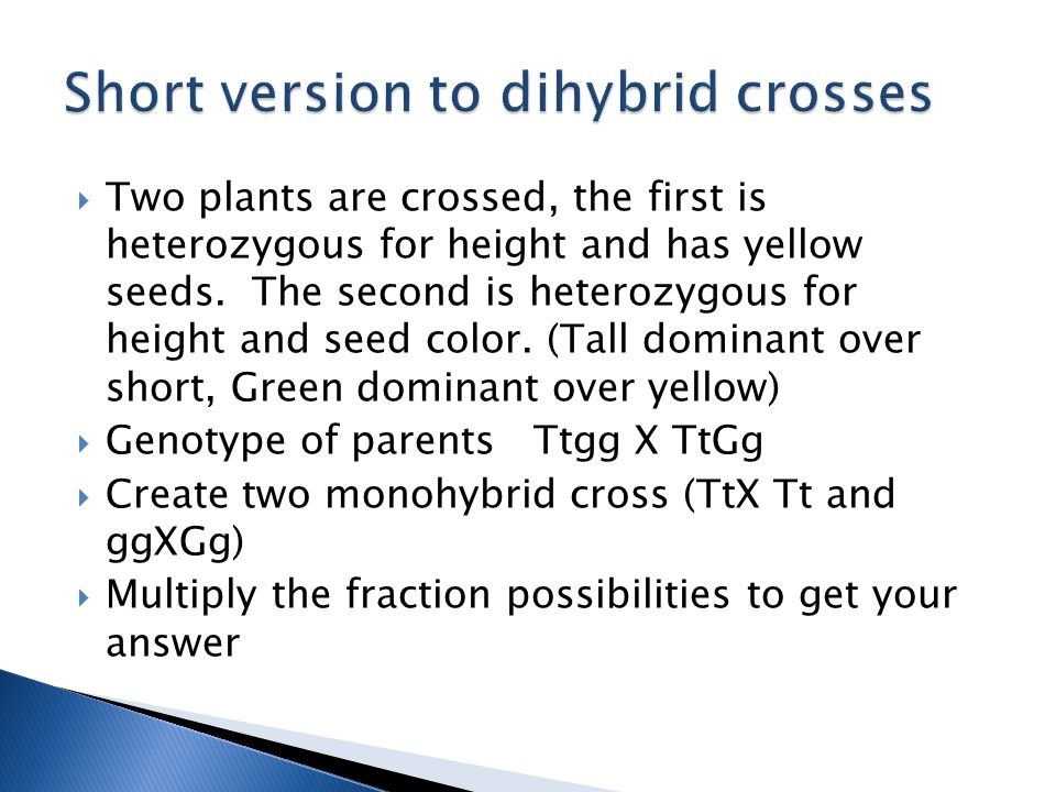  Two plants are crossed, the first is heterozygous for height and has yellow seeds.
