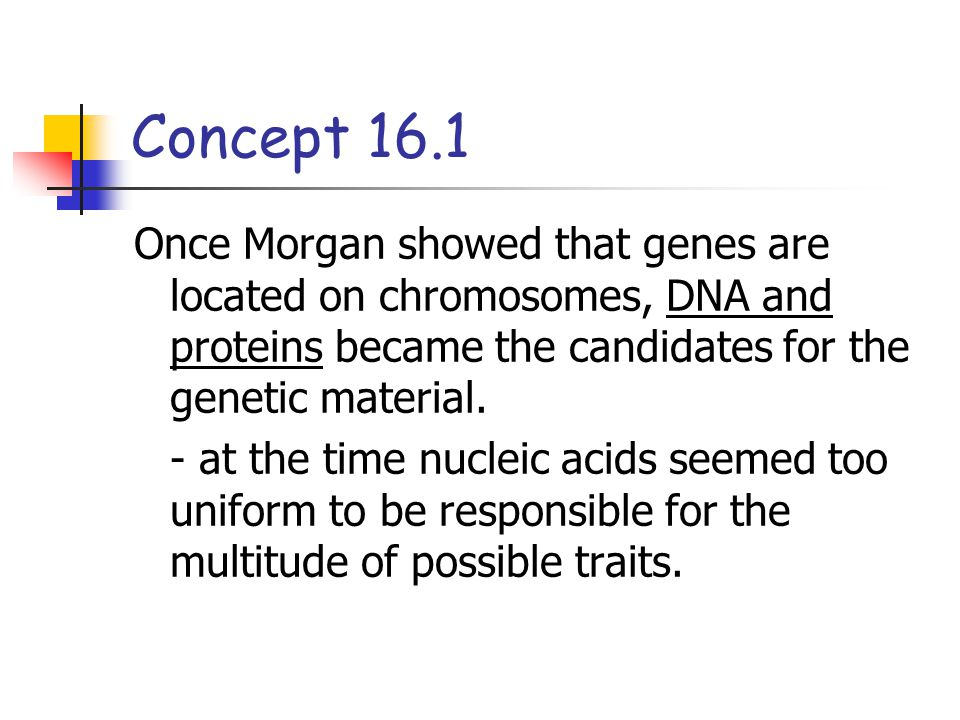 Concept 16.1 The role of DNA in heredity was first studied by using bacteria and viruses.