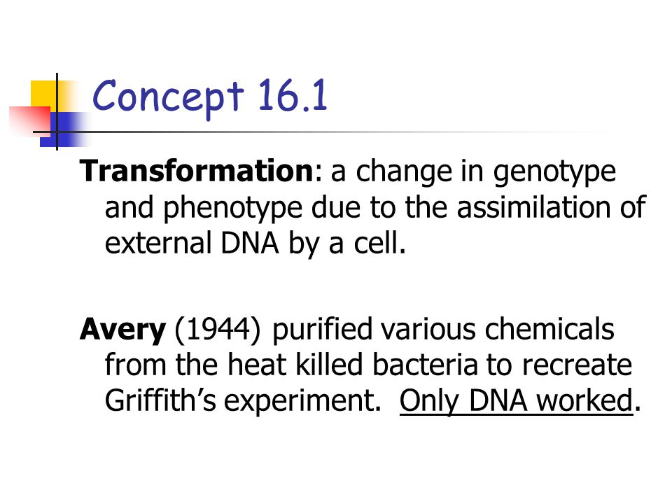 Concept 16.1 Transformation: a change in genotype and phenotype due to the assimilation of external DNA by a cell. Avery (1944) purified various chemi