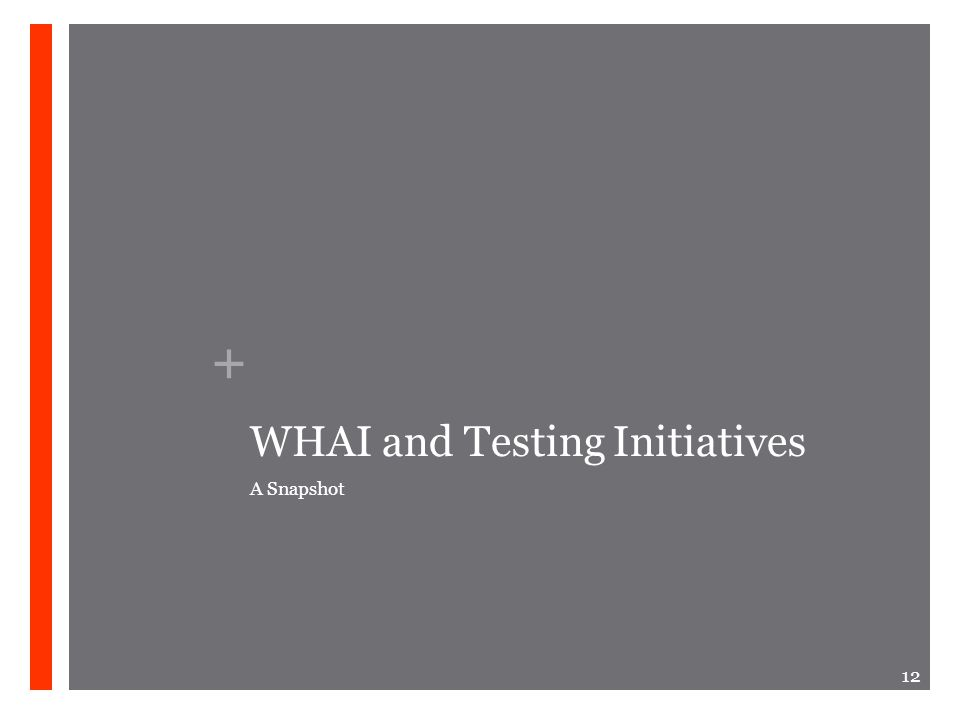 + WHAI and Testing Initiatives A Snapshot 12