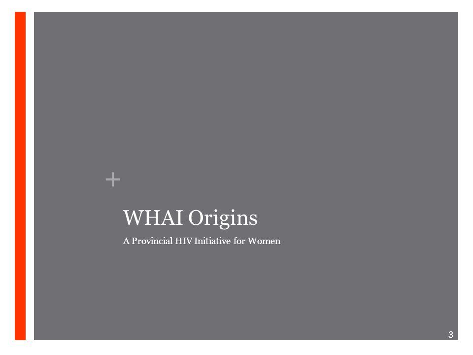 + WHAI Origins A Provincial HIV Initiative for Women 3