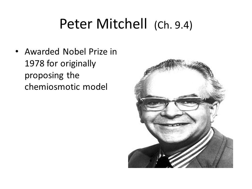 Peter Mitchell (Ch.