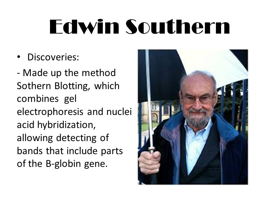 Edwin Southern Discoveries: - Made up the method Sothern Blotting, which combines gel electrophoresis and nuclei acid hybridization, allowing detecting of bands that include parts of the B-globin gene.