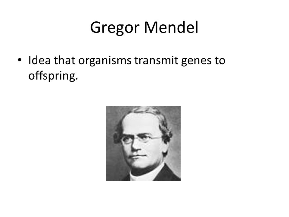 Gregor Mendel Idea that organisms transmit genes to offspring.