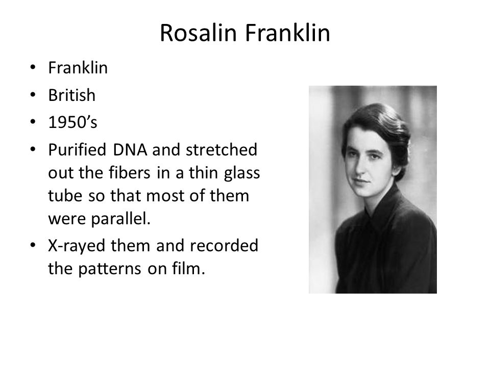 Rosalin Franklin Franklin British 1950's Purified DNA and stretched out the fibers in a thin glass tube so that most of them were parallel.