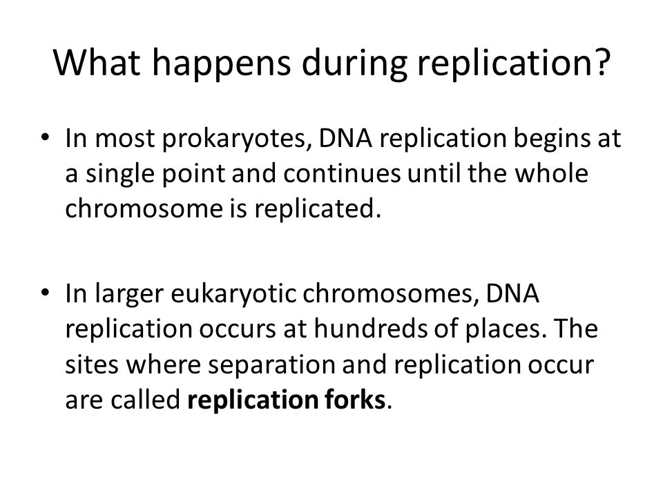 What happens during replication.