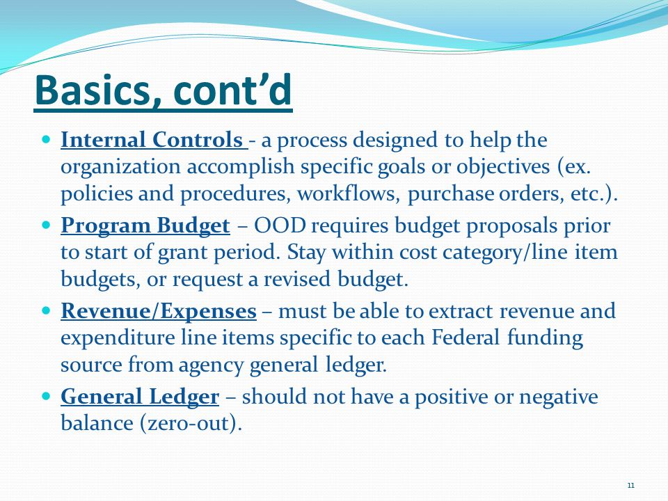 Basics, cont'd Internal Controls - a process designed to help the organization accomplish specific goals or objectives (ex.