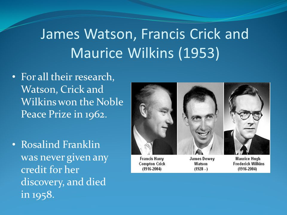 James Watson, Francis Crick and Maurice Wilkins (1953) For all their research, Watson, Crick and Wilkins won the Noble Peace Prize in 1962. Rosalind F