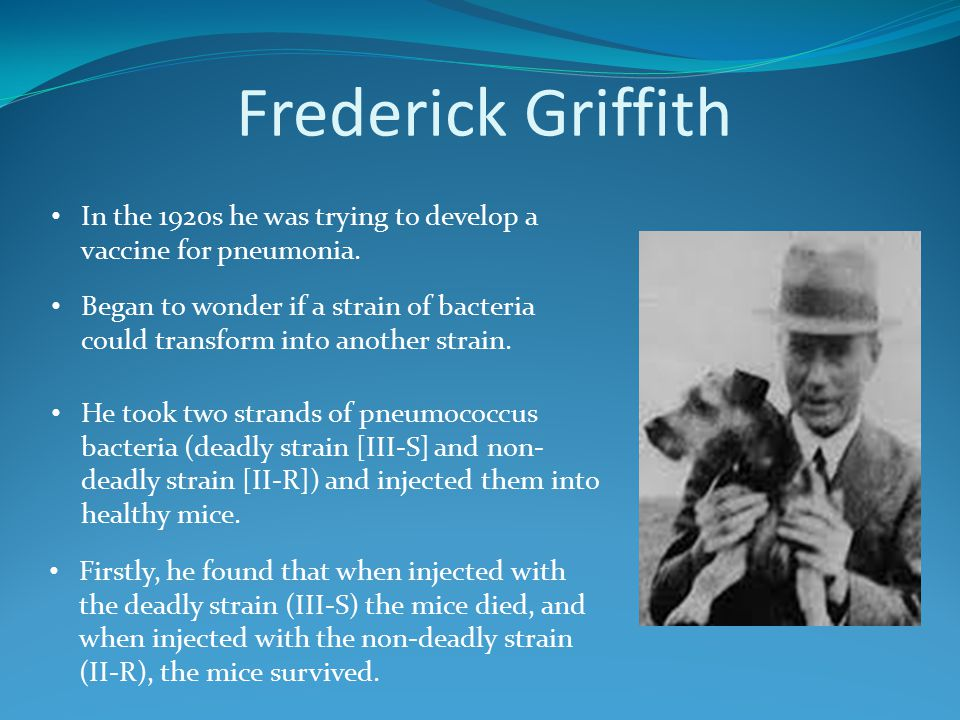 Frederick Griffith In the 1920s he was trying to develop a vaccine for pneumonia. He took two strands of pneumococcus bacteria (deadly strain [III-S]