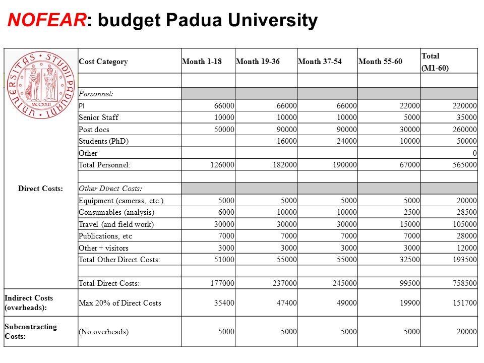 Cost CategoryMonth 1-18Month 19-36Month 37-54Month 55-60 Total (M1-60) Padua University Direct Costs: Personnel: PI 66000 22000220000 Senior Staff1000