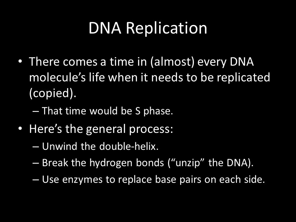 DNA Replication There comes a time in (almost) every DNA molecule's life when it needs to be replicated (copied). – That time would be S phase. Here's