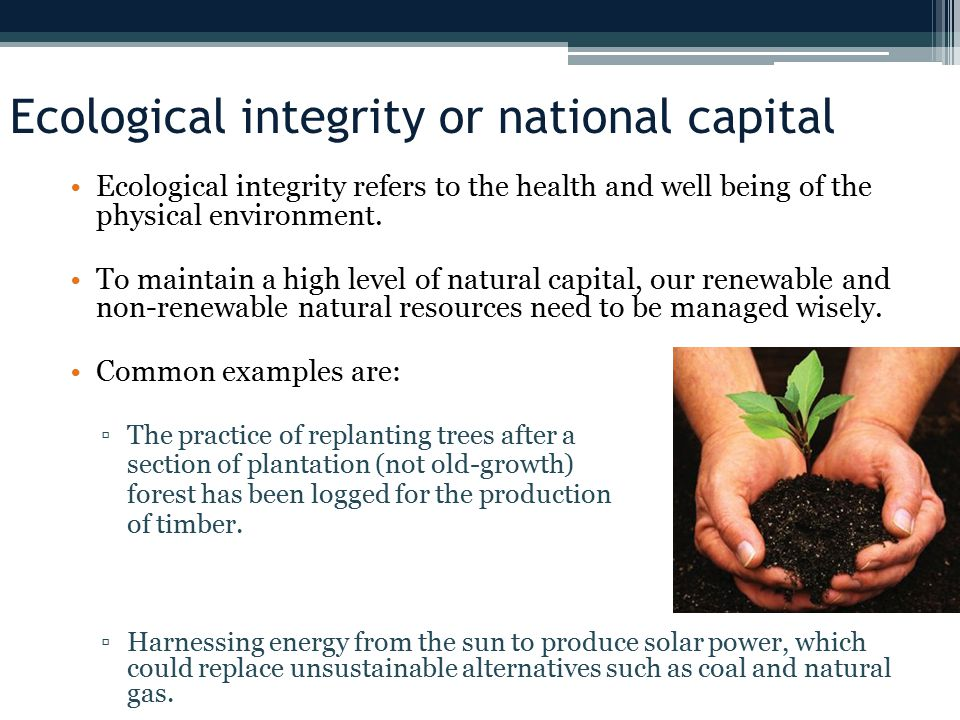 Ecological integrity or national capital Ecological integrity refers to the health and well being of the physical environment.