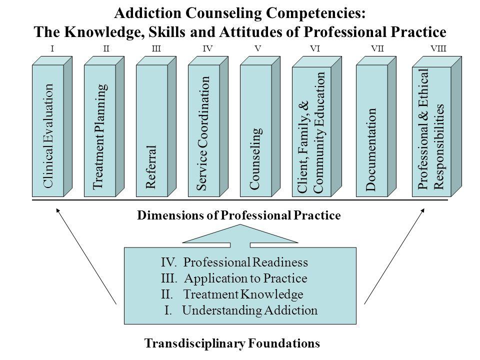 IV. Professional Readiness III. Application to Practice II.