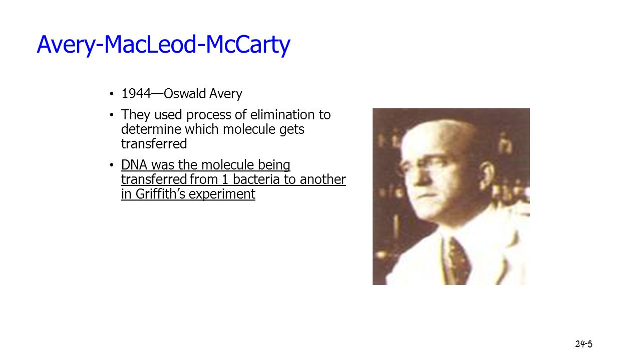 24-5 Avery-MacLeod-McCarty 1944—Oswald Avery They used process of elimination to determine which molecule gets transferred DNA was the molecule being