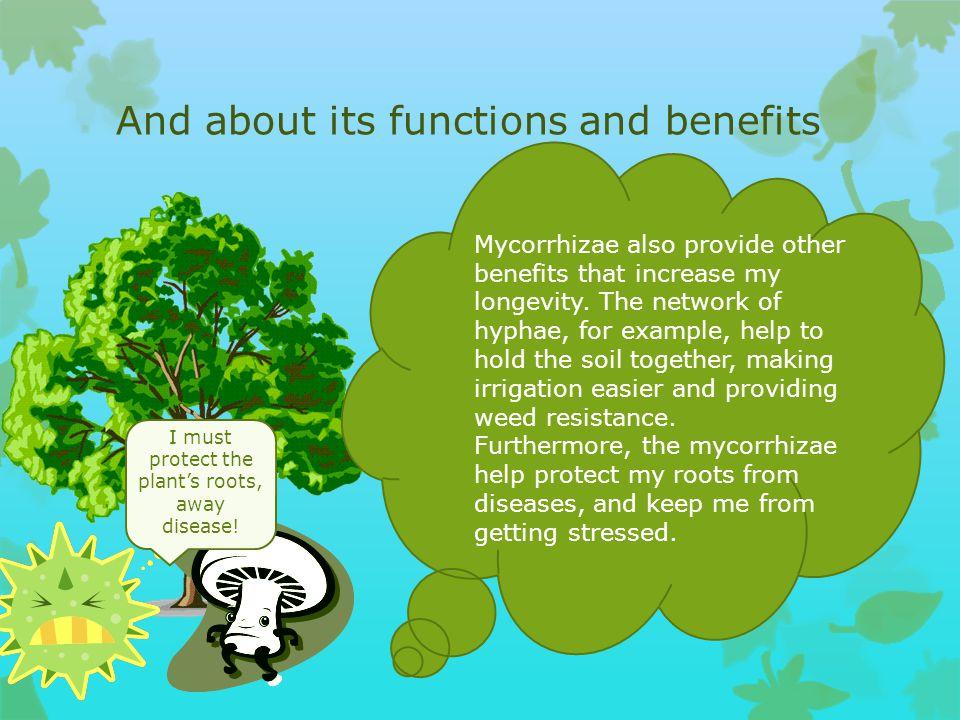 Bertha, Sasha, Zack, Cody, and Greg told us all about their Mycorrhizae Mycorrhizae helps us absorb nutrients like phosphorous and nitrogen through ou